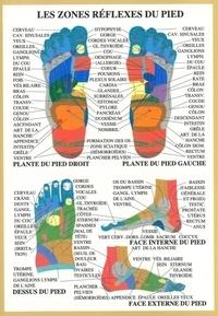 XXX - Planche Zones réflexes pieds - 17x24 cm.
