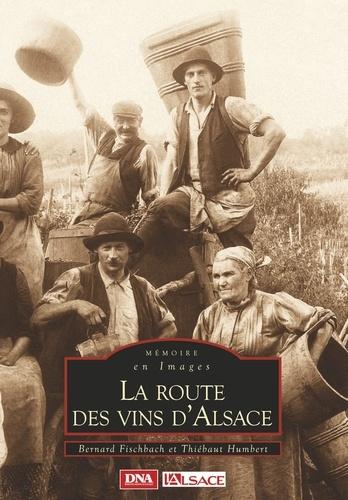 XXX - Route des vins d'alsace (la).