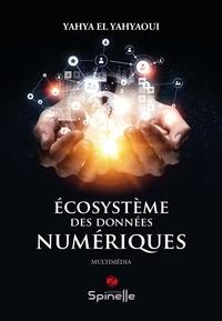 Yahya El Yahyaoui - Ecosystème des données numériques.
