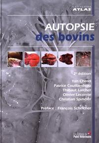 Autopsie des bovins.pdf