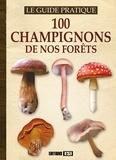 Yann Belloir - 100 champignons de nos forêts.