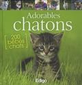 Yann Belloir - Adorables chatons.