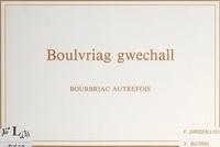 Yannick Botrel et François Diridollou - Boulvriag gwechall - Bourbriac autrefois.