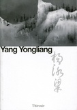 Yongliang Yang - Yang Yongliang - Paysages.