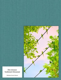 Yoshinori Mizutani - Des oiseaux.