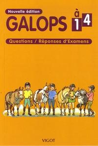 Yvan Benoist-Gironière - Galops 1 à 4 - Questions/Réponses d'Examens.