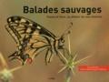 Yvan Lebreton - Balades sauvages - Faune et flore, au détour de nos chemins.