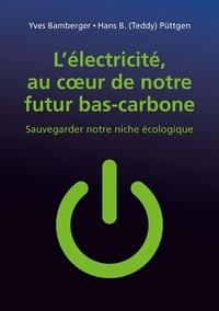 Yves Bamberger et Hans B. Püttgen - L'électricité, au coeur de notre futur bas-carbone - Sauvegarder notre niche écologique.