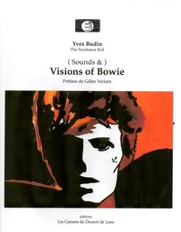 Yves Budin - Visions of Bowie.
