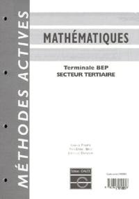 Deedr.fr MATHEMATIQUES TERMINALE BEP SECTEUR TERTIAIRE. Avec chemise de rangement Image