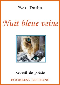 Yves Durlin - Nuit bleue veine.