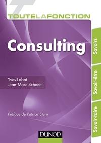 Yves Labat et Jean-Marc Schoettl - Toute la fonction consulting.