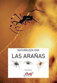 Yves Masiac - Las arañas.