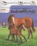 Yvette Barbetti et Michaël Welply - Le cheval.