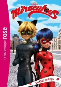 Zagtoon et  Method Animation - Miraculous 02 - Un Chat de trop !.