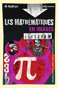 Ziauddin Sardar et Jerry Ravetz - Les mathématiques en images.