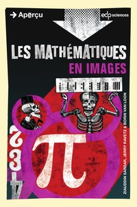 Ziauddin Sardar - Les mathématiques.